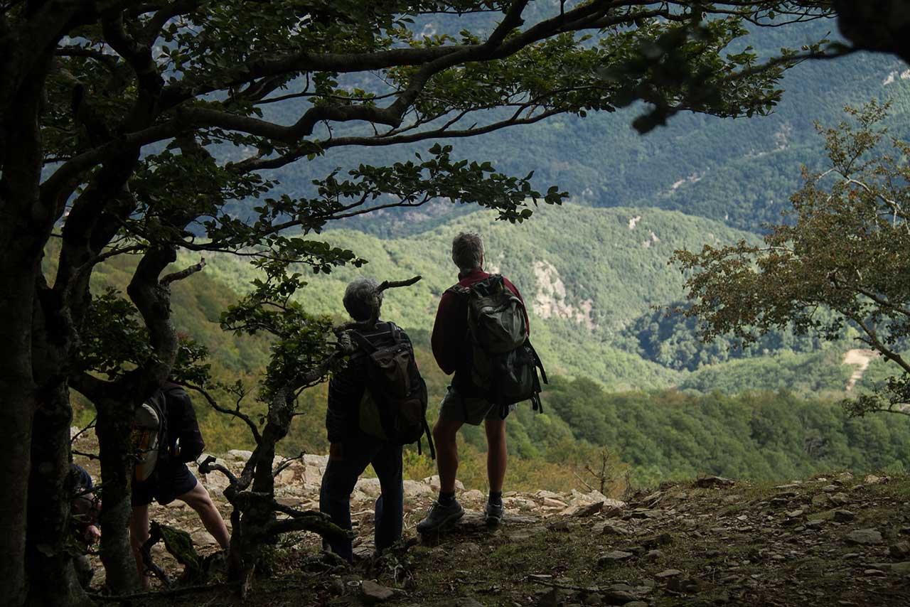 control Z - Marges i Fronteres - Jordi Lafon - Fotografia - VIdeo